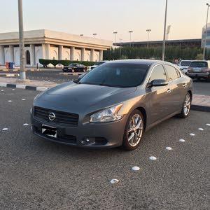 Nissan Maxima 2010 For sale -  color