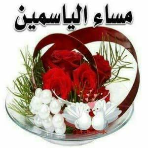 أبو عزام السوداني بشري