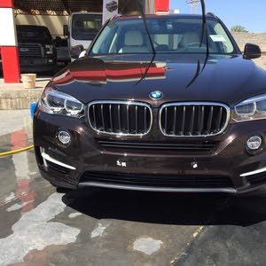 Gasoline Fuel/Power   BMW X5 2017