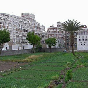 محمدعلي العطاني العطاني اليمني