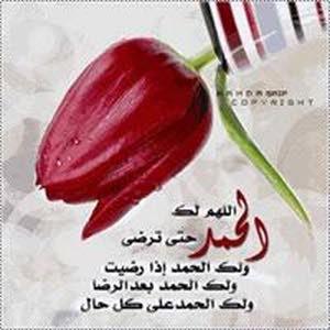Oman Myheart