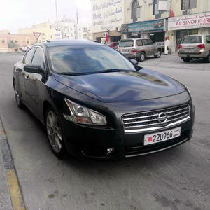 For sale Used Maxima - Automatic