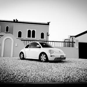 Volkswagen Beetle in Sharjah