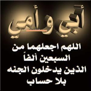 ابو المهند