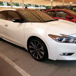 White Nissan Maxima 2016 for sale