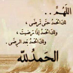 أحمد غالي