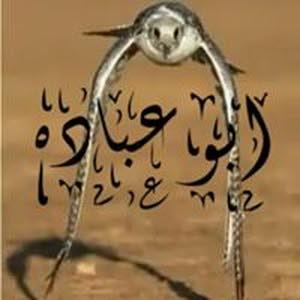 أبو عباده الخمايسه