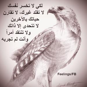 عبدالمنعم الشائبي