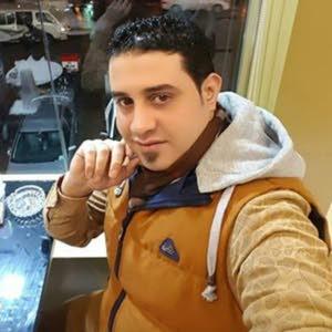 Wael EL Shabrawy EL Shabrawy