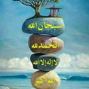 محمد على على
