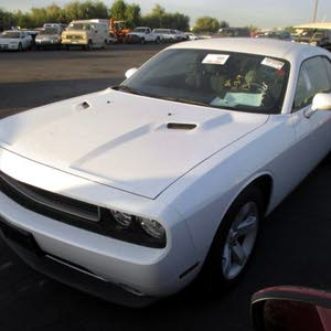 White Dodge Challenger 2014 for sale