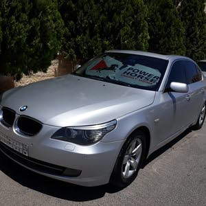 2010 Used BMW 520 for sale