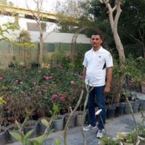 احمد الهلالي