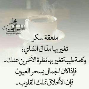 أمير أحمد