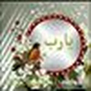 نور حسن حسين