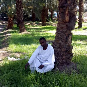 mohammad al-abeed