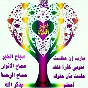 احمد حازم