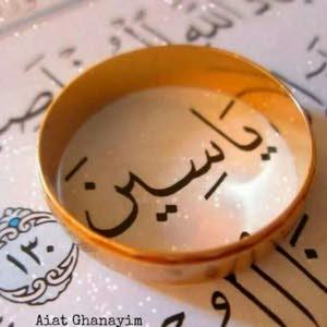 Loomaa Tawfik