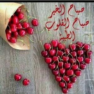 حجي محمد السيد