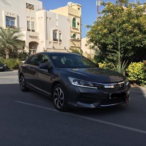 Honda Accord 2017 (Grey)