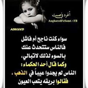 عماد حسن عبد عبد الحي