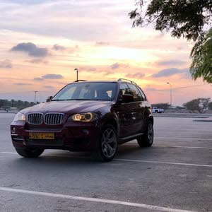 Gasoline Fuel/Power   BMW X5 2010