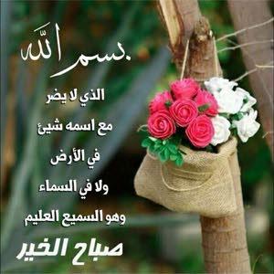 الهم  ابوالفتوح الفايد ابوالفتوح الفايد