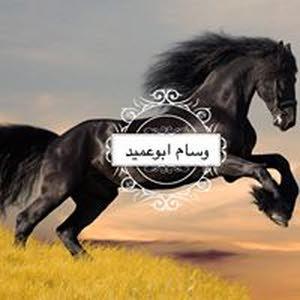 وسام ابوعميد
