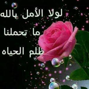 ياسمين الشام العتيق