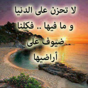 Hussein Mohammed  محمد