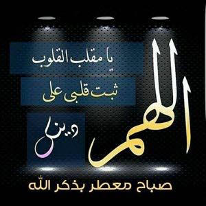 Mostafa Elboushy