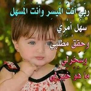 Sheref Asheref