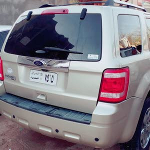 2011 Used Ford Escape for sale