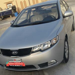 2013 Kia in Northern Governorate