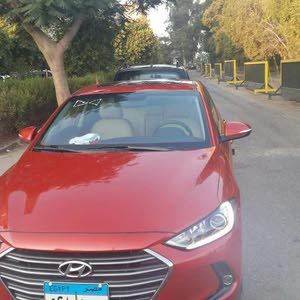 Hyundai Elantra in Cairo