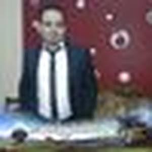 Mahmoud Abotaleb