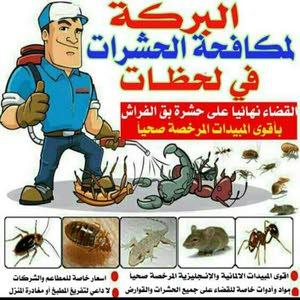 مكافحة حشرات وقوارض Brkatt