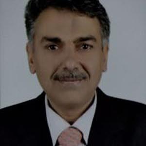 Hany Hegab
