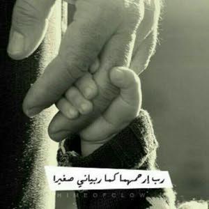 Walid Nour Nour