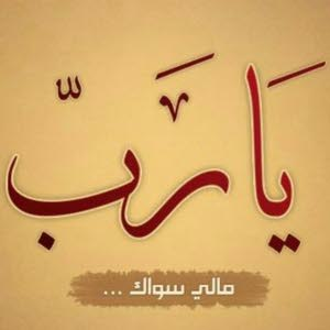 أبو مصطفى alwakel