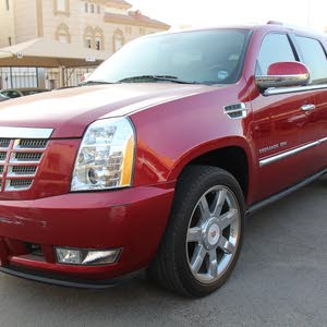 2013 Used Escalade with Automatic transmission is available for sale