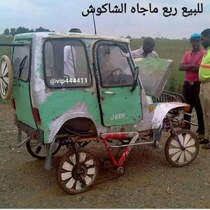 امير العبدالله