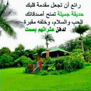 محمدزيد