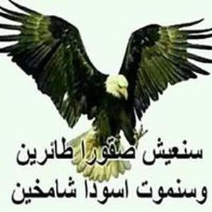وهيب محمد ابراهيمي