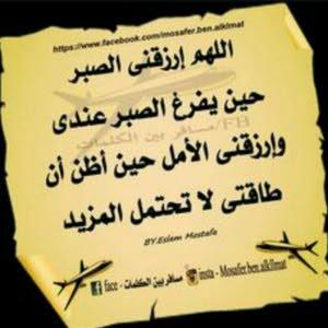 احمد العامري