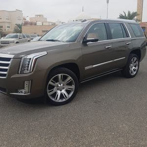 2015 Cadillac Escalade for sale at best price