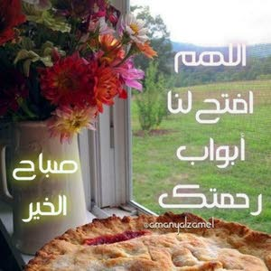 Hazem Ali Ali