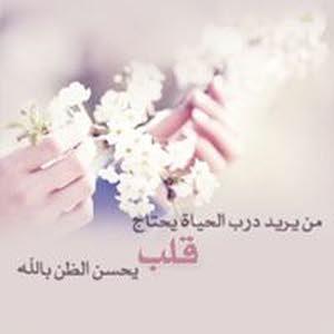 محمود الباز الباز