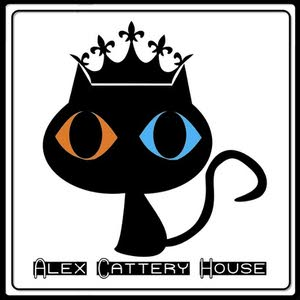 Alex Cattery House