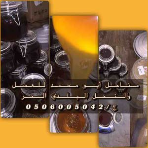 مناحل أبو محمد للعسل والنحل البلدي الحر